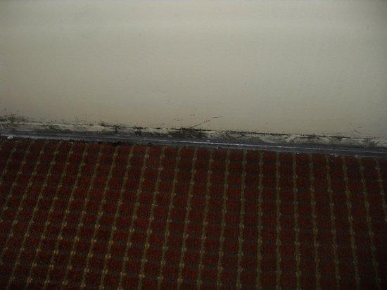 Days Inn Alexandria: bottom of door with mold/rust