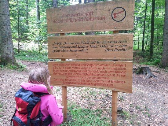 Inzell, Alemania: die Hinweisschilder