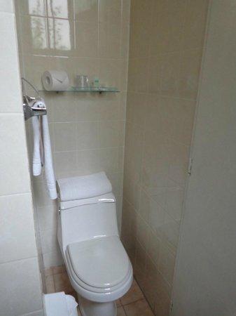 Tulip Inn Presidente Hotel Santiago: Banheiro