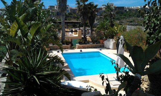 Thirtyseven Gozo: Perfect pool