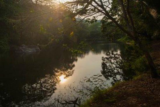 Finca Canas Castilla: An dieser Lagune gibt es Krokodile und vieles mehr