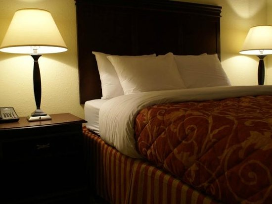 Columbus Extended Stay Hotel: One Bedroom Suite