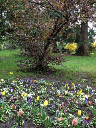 L'Assiette Champenoise: garden trees