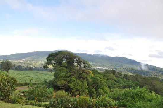 Poas Volcano Lodge: Vista desde la habitacion