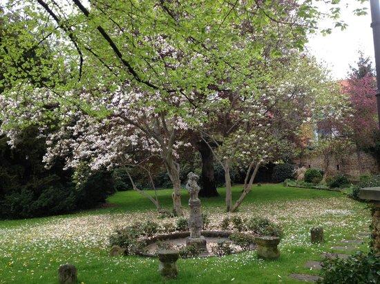 Hotel Ketschauer Hof : garden