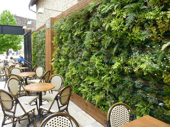 Terrasse ext rieure le mur v g tal photo de le for Terrasse mur vegetal