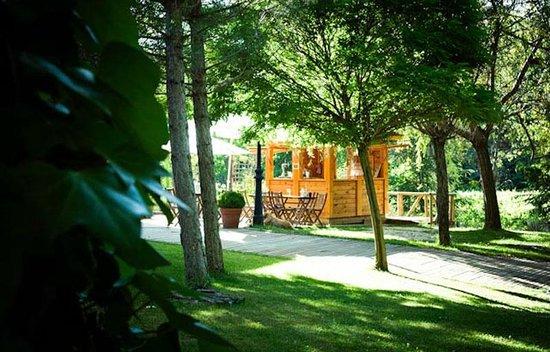 Fuentenava de Jabaga, Spanien: Woodbar