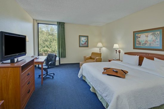 Hampton Inn Ft. Lauderdale-Commercial Blvd.: King Standard
