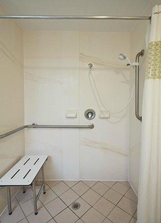 Hampton Inn Ft. Lauderdale-Commercial Blvd.: Accessible Bath Room