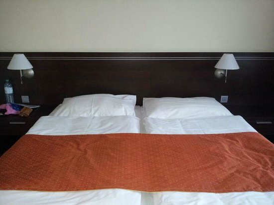 Tatra Hotel: Camera matrimoniale