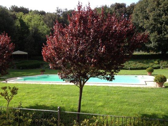 Residenza San Pietro Sopra Le Acque: La vista della piscina dalla nostra camera