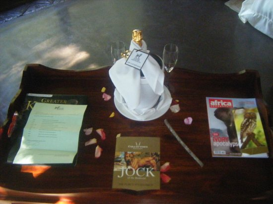 Jock Safari Lodge: Honeymoon Champagne in our room