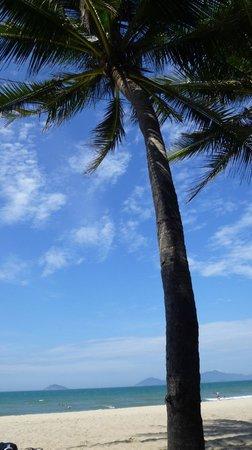 Cua Dai Beach : Weißer Sand & Palmen :-)