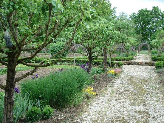 Chateau de Montriou : le jardin potager