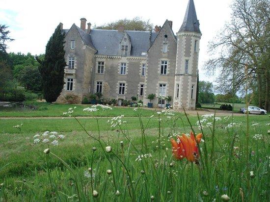Chateau de Montriou : vue sur le château