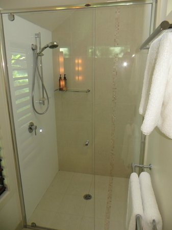 Gaia Retreat & Spa: shower