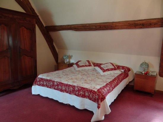 Hotel Chateau de la Berchere : Room