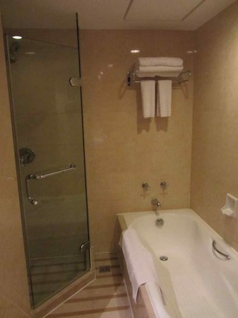Fu Hong International Hotel: shower tube