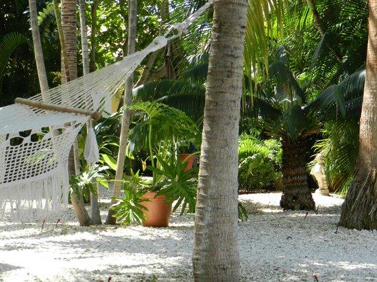 B&B Sombre di Kabana: garden