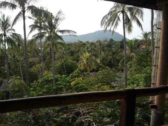 Kamalaya Koh Samui: view