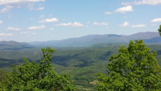 Chilhowee Mountain Retreat: View from the wildflower room