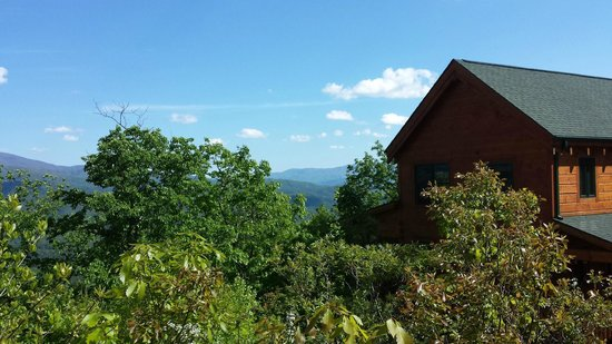 Chilhowee Mountain Retreat: View from outside the forest room