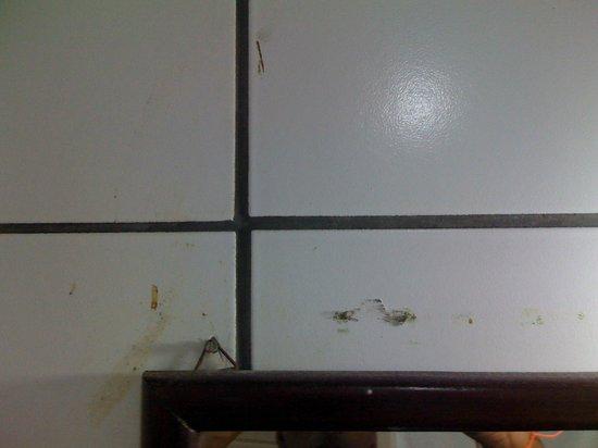 Hotel Casa Blanca: parede do quarto