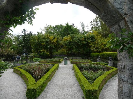 VanDusen Botanical Garden: rose garden.