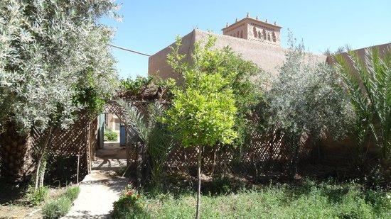 Gite Kasbah La Palmeraie: jardin