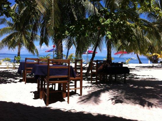 Evolution Diving Resort: Beach bar