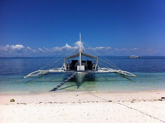 Evolution Diving Resort: Evolution dive boat