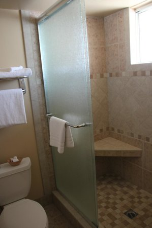 BEST WESTERN PLUS King's Inn & Suites: Excelent shower!