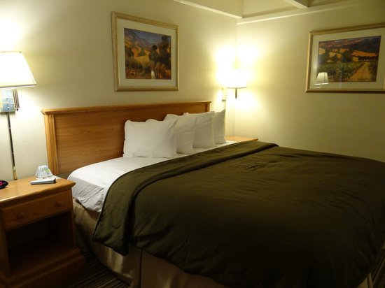 BEST WESTERN El Rancho Palacio: King bedroom