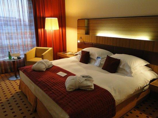 Radisson Blu Hotel Krakow: Radisson Blu Hotel