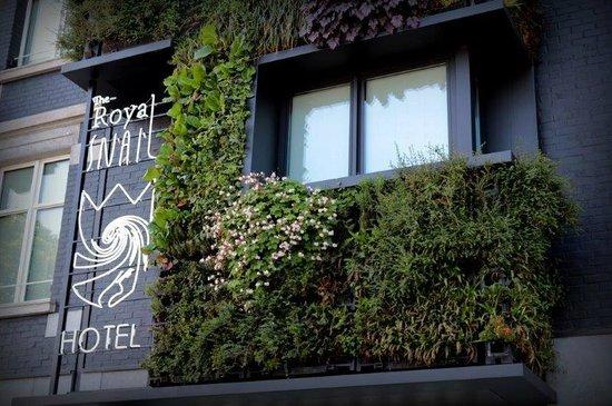 The Royal Snail Hotel : vegetal