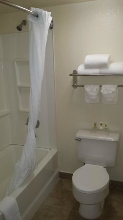 Country Inn & Suites By Carlson, Miami (Kendall): Bathroom