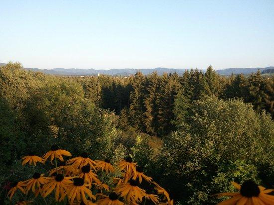 Allgäuer Terrassenhotel: Blick vom Restaurant übers Allgäu