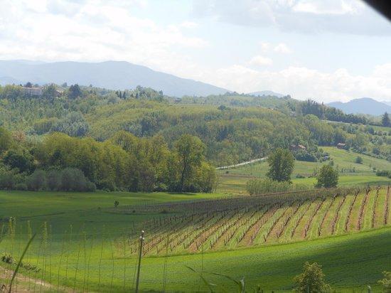 Cascina la Maddalena Bed & Wine: il panorama
