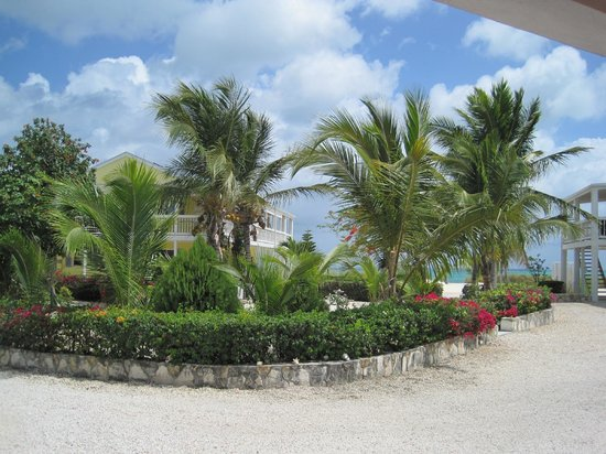Aquamarine Beach Houses: view from Sunset House