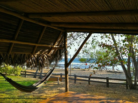 Hotel Playa Negra: hammock on the beach