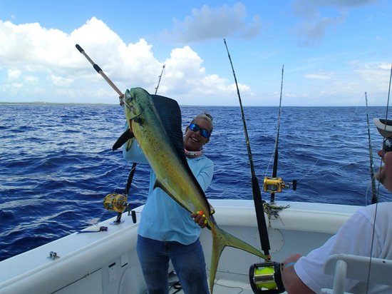 Panoply Sport Fishing & Luxury Charters: Good size Mahi Mahi
