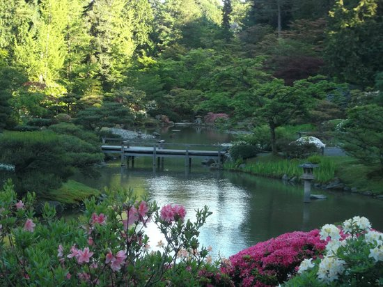 Seattle Japanese Garden: All You Need To Know Before You