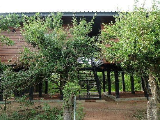 Cinnamon Wild Yala: Our Favourite Rooms
