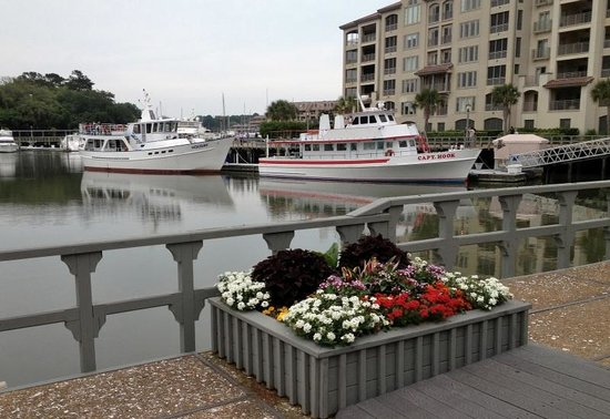Marriott's Harbour Point and Sunset Pointe at Shelter Cove: Shelter Cove Marina within walking distance
