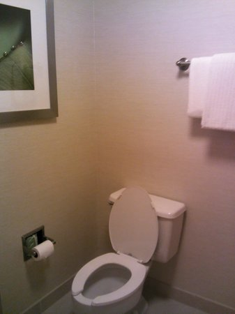 Country Inn & Suites By Carlson, Dallas-Love Field (Medical Center) : Toilet area