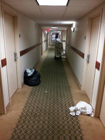 Grand Forks Inn & Suites : Regular scene all day long in hallway