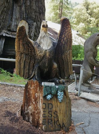 Famous Tree Houses beautiful eagle carving - picture of world famous tree house