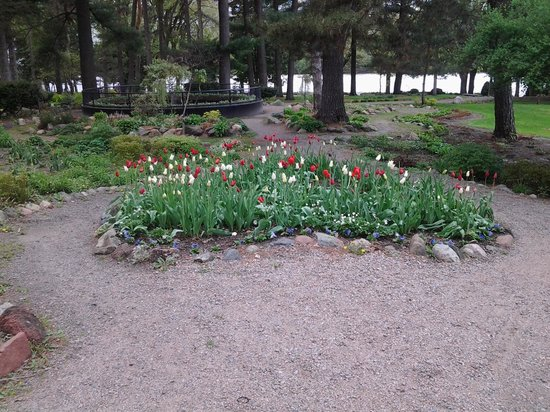 Munsinger Gardens: the sweet blooms of spring