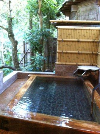 Nanadaru Onsen Hotel : Private outdoor bath