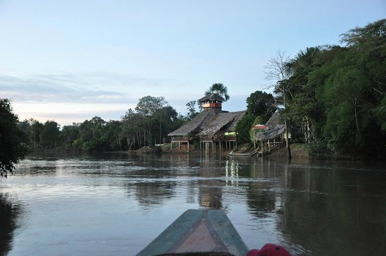 Amazon Rainforest Lodge: El lodge visto desde el rio